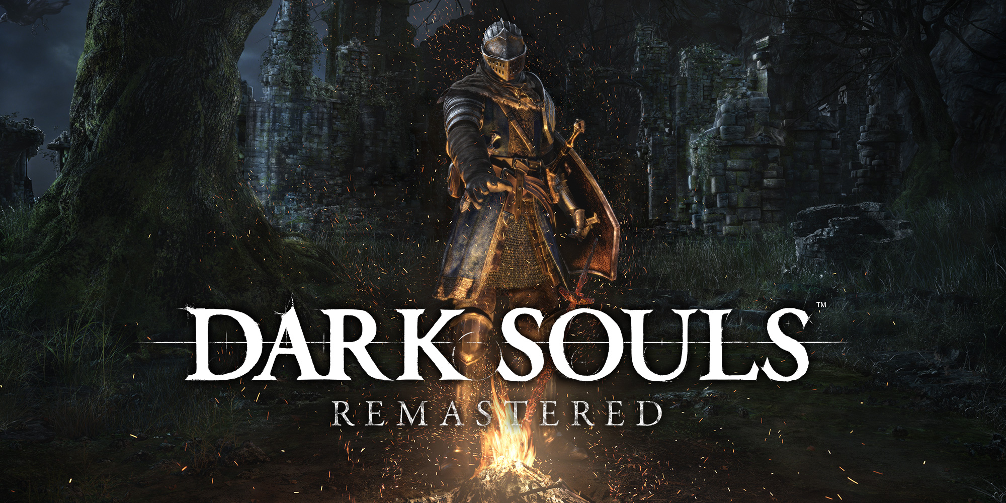 Dark souls remastered is on sale on indiegala right now