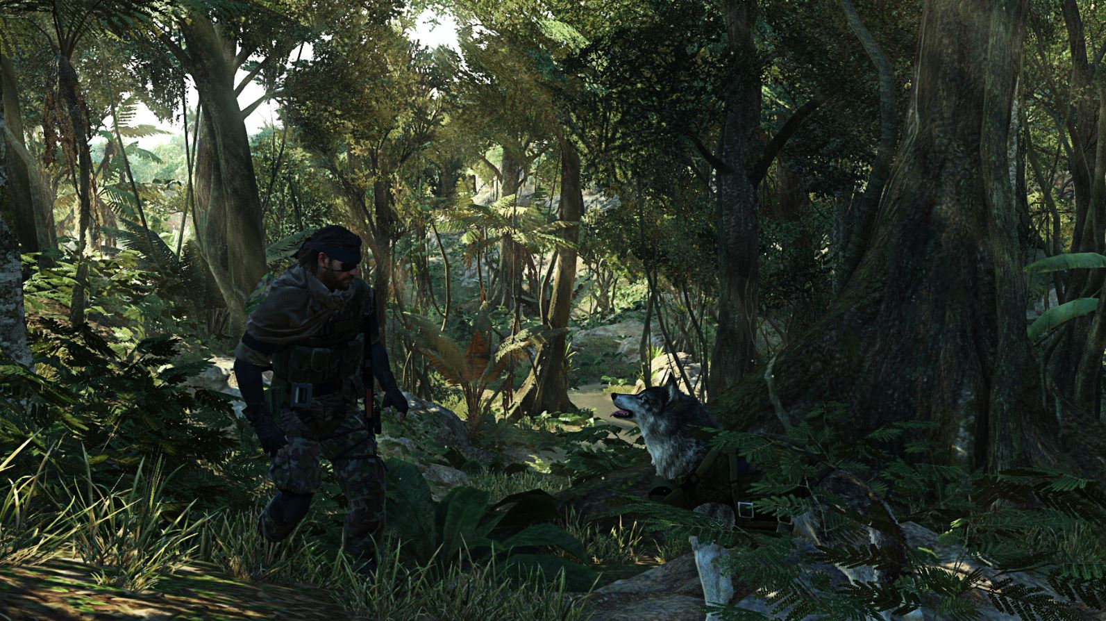 Metal Gear Solid V has fantastic Landscapes